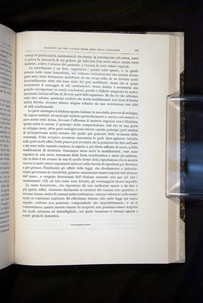 Image of Darwin-F920-1876-685