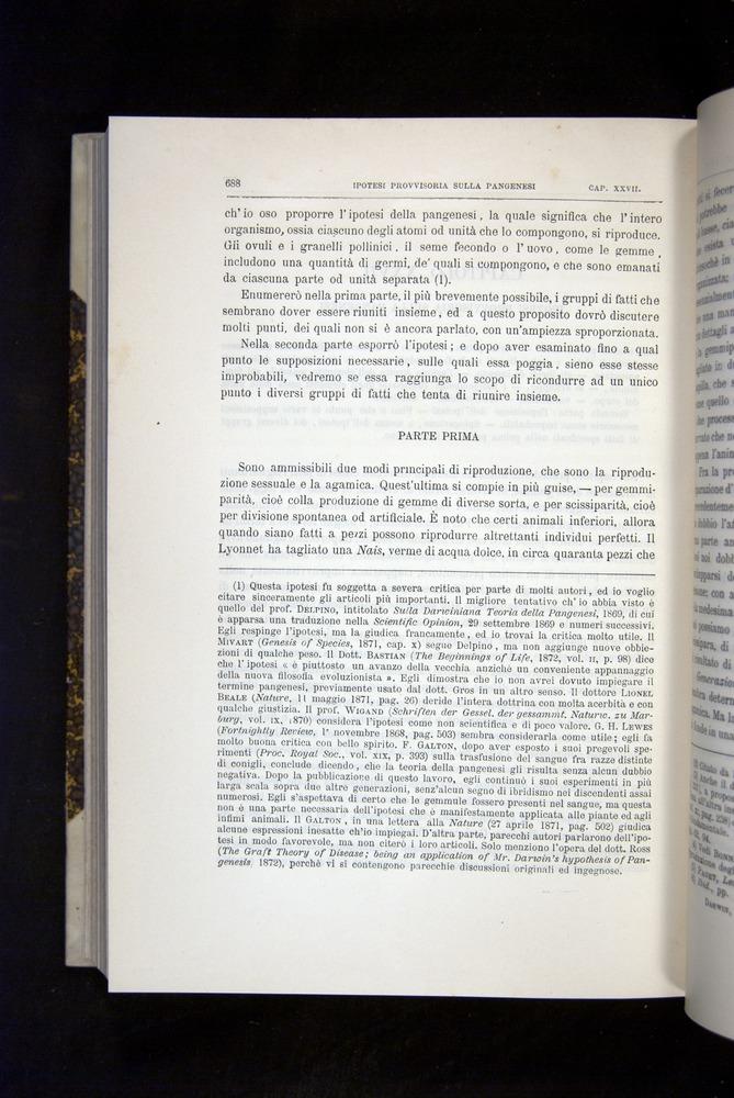 Image of Darwin-F920-1876-688