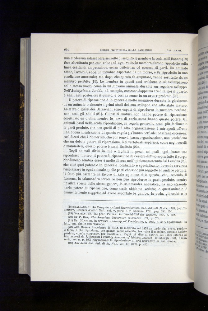 Image of Darwin-F920-1876-694