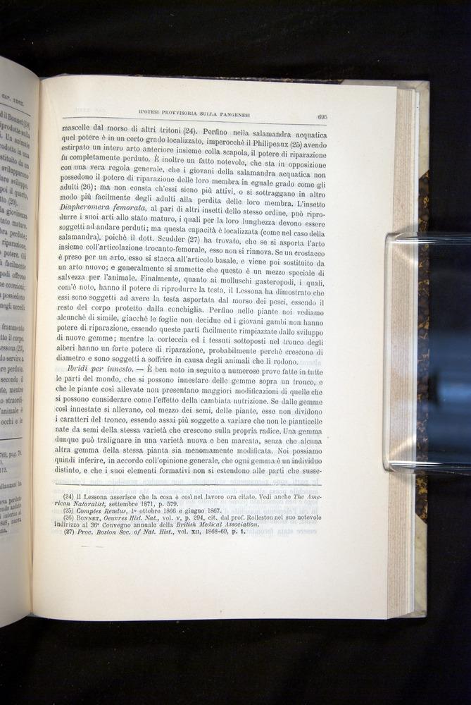 Image of Darwin-F920-1876-695