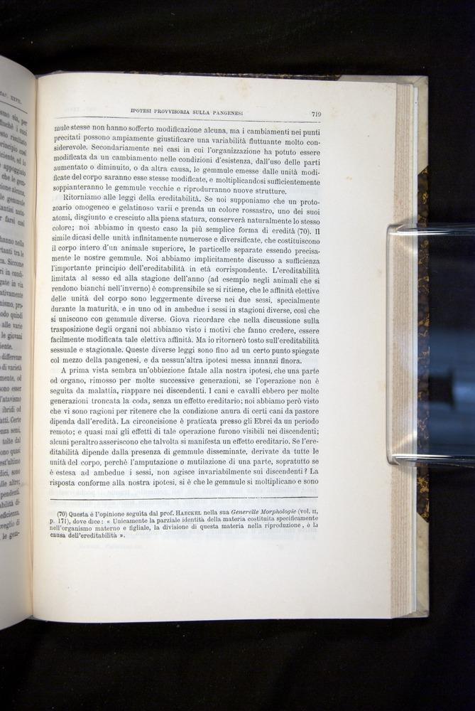 Image of Darwin-F920-1876-719