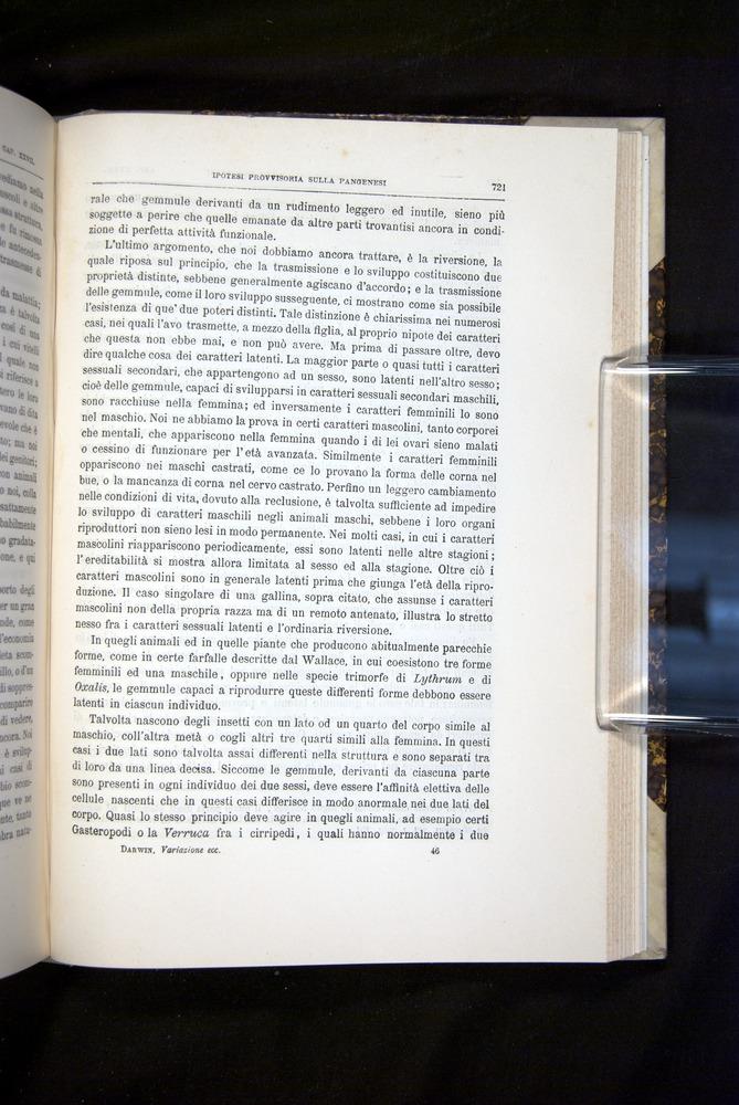 Image of Darwin-F920-1876-721