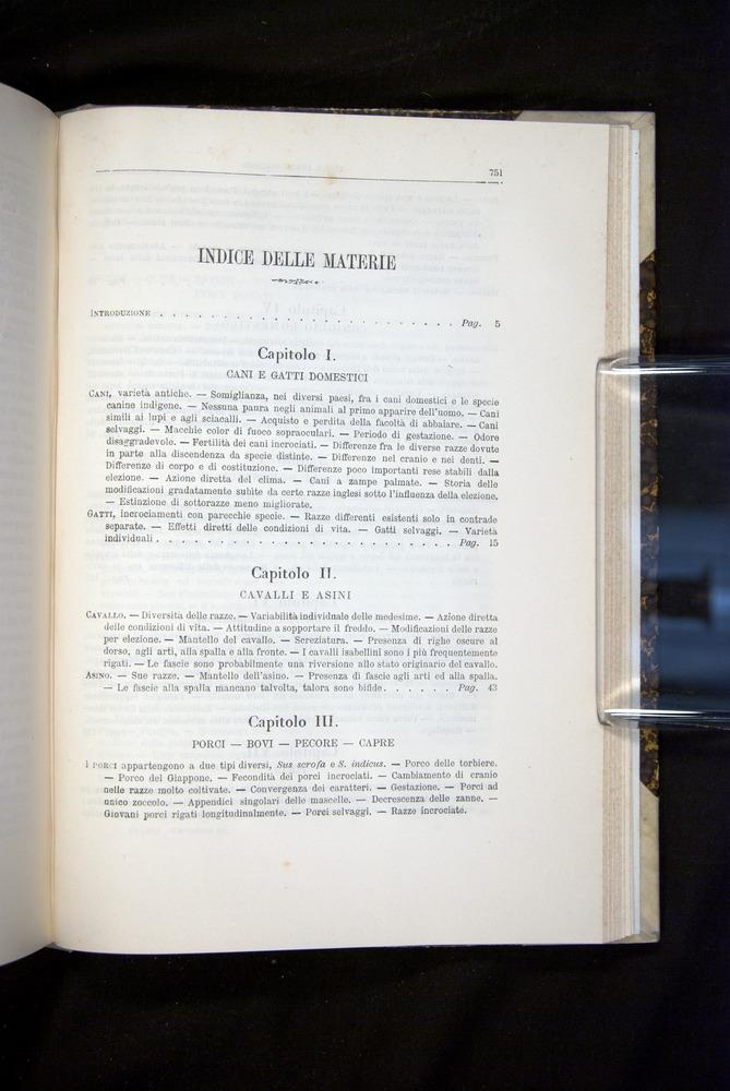 Image of Darwin-F920-1876-751