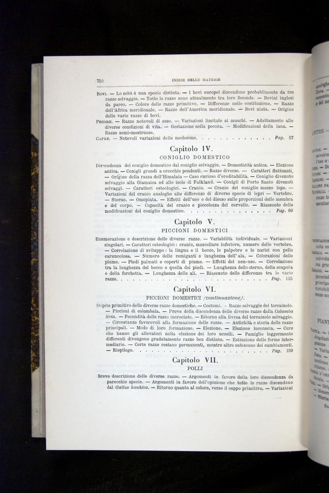 Image of Darwin-F920-1876-752