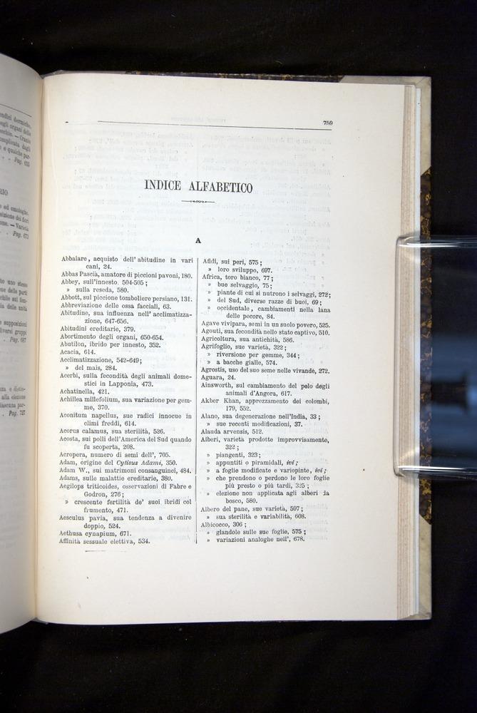 Image of Darwin-F920-1876-759