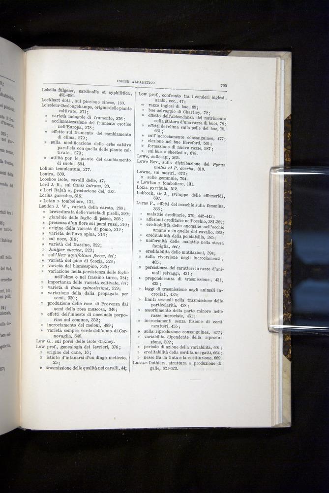 Image of Darwin-F920-1876-795