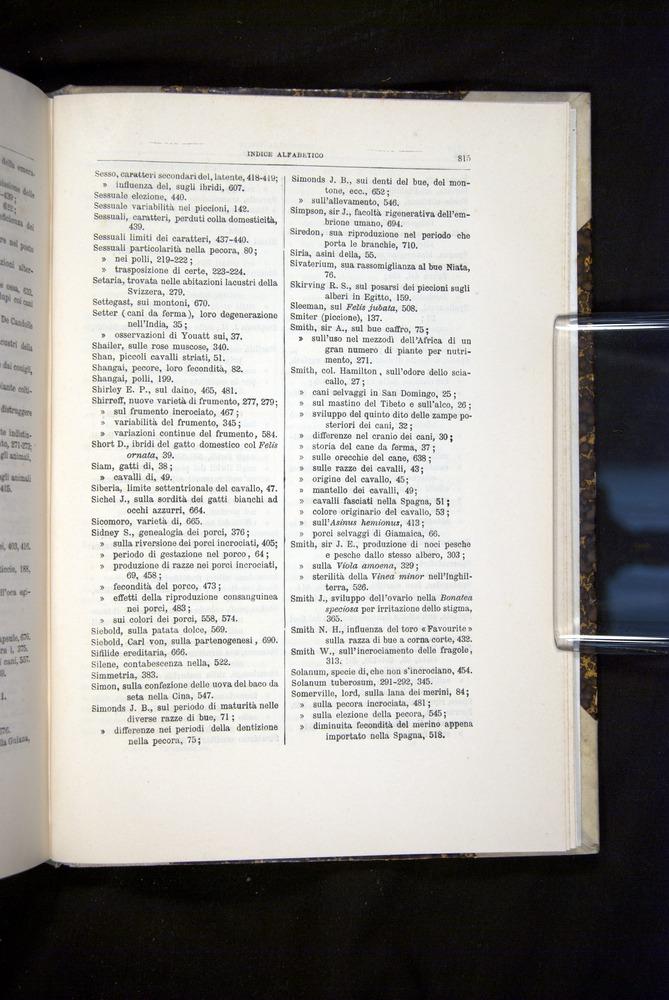 Image of Darwin-F920-1876-815