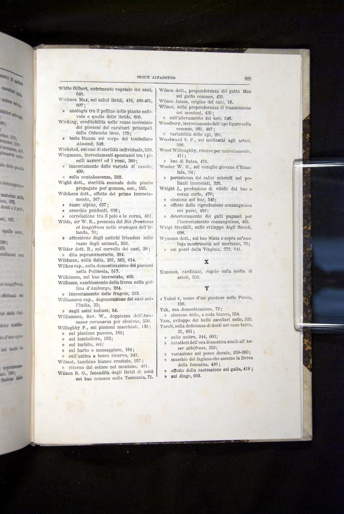 Image of Darwin-F920-1876-823