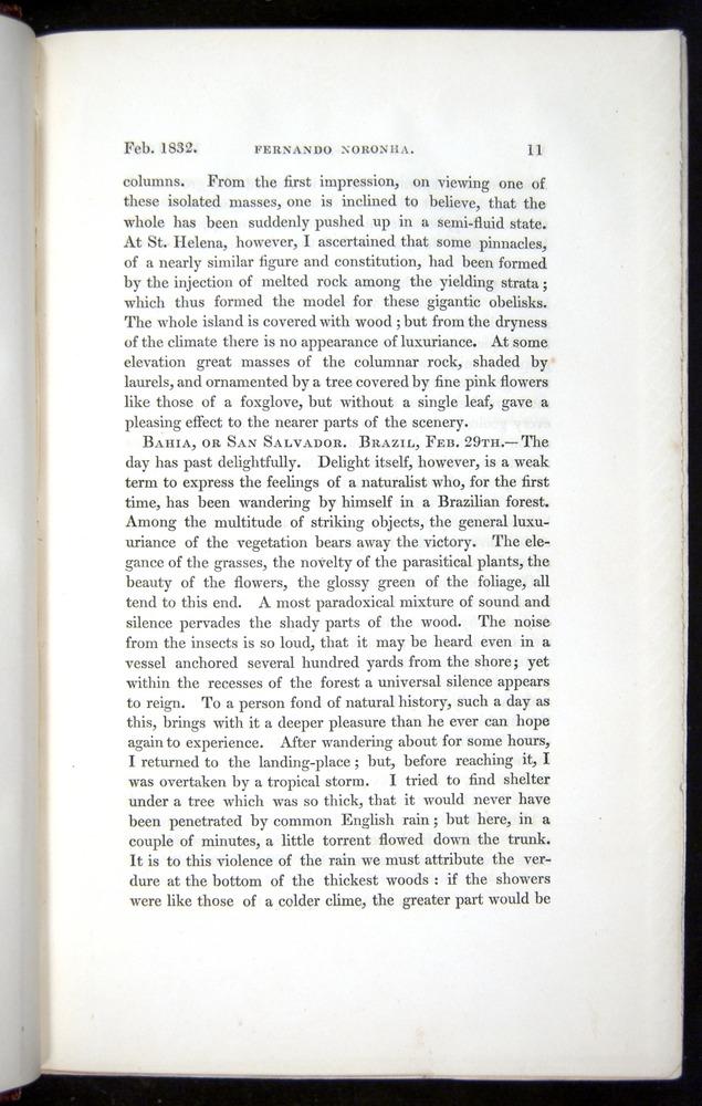 Image of Darwin-F11-1839-00011