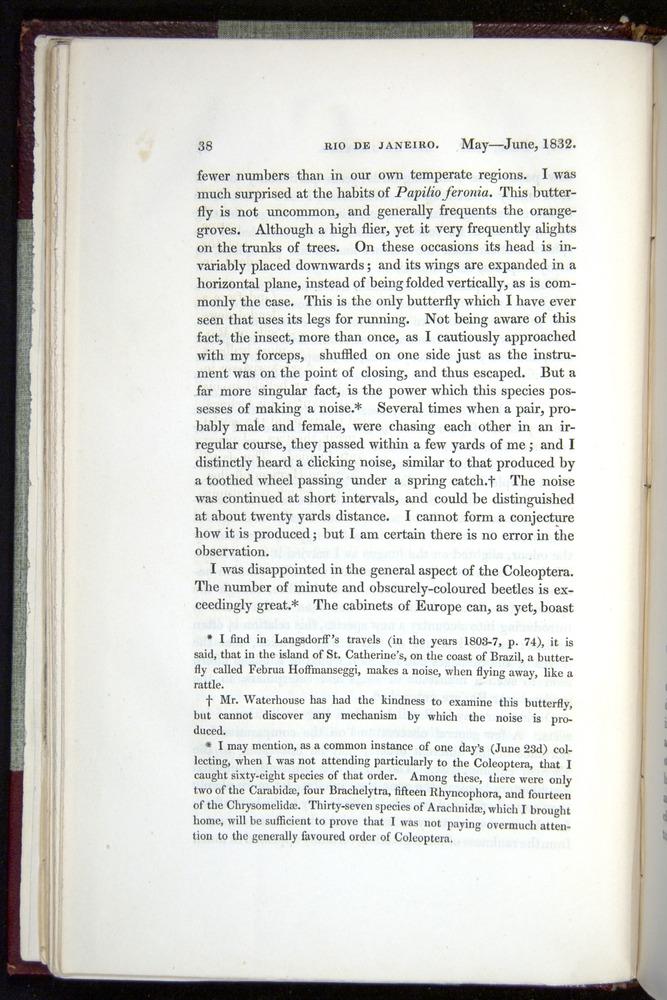 Image of Darwin-F11-1839-00038