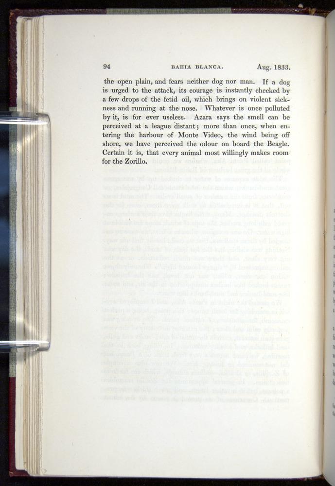 Image of Darwin-F11-1839-00094