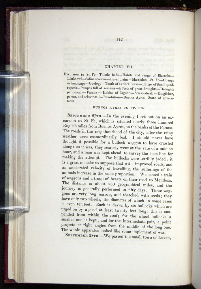 Image of Darwin-F11-1839-00142