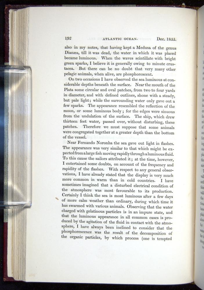 Image of Darwin-F11-1839-00192