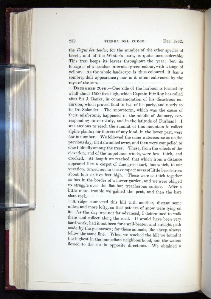 Image of Darwin-F11-1839-00232