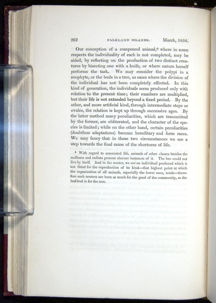Image of Darwin-F11-1839-00262