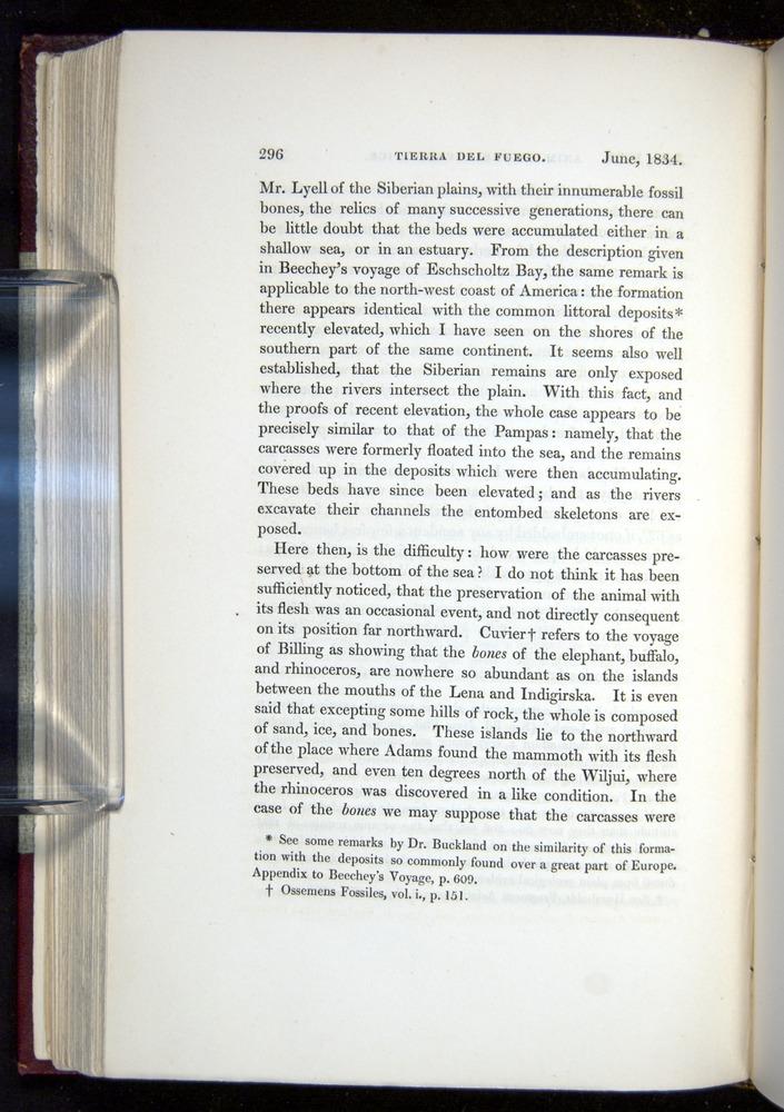 Image of Darwin-F11-1839-00296