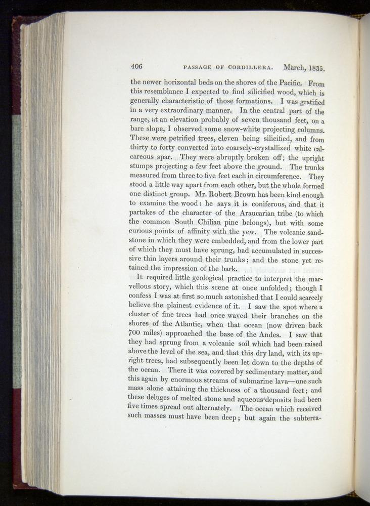 Image of Darwin-F11-1839-00406