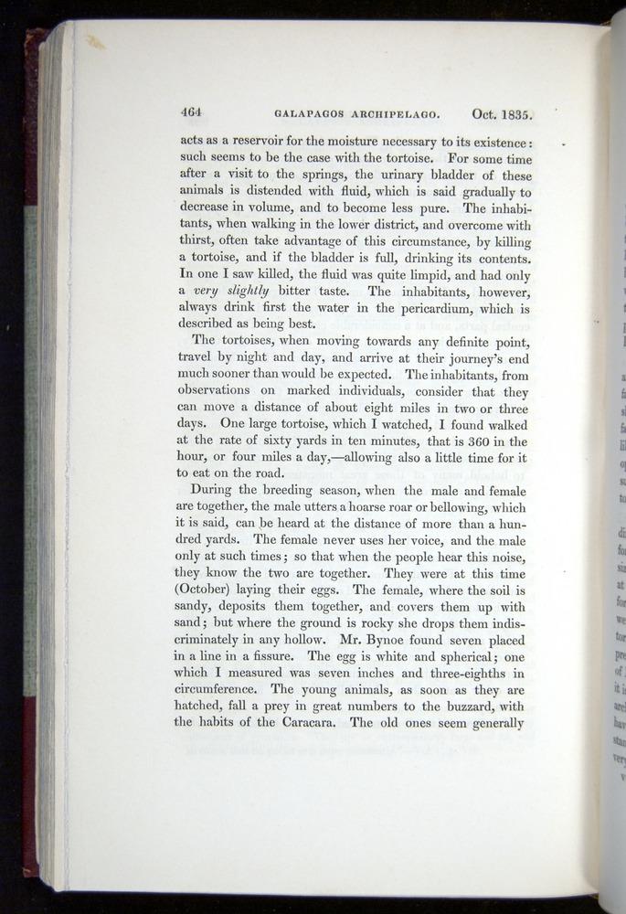 Image of Darwin-F11-1839-00464