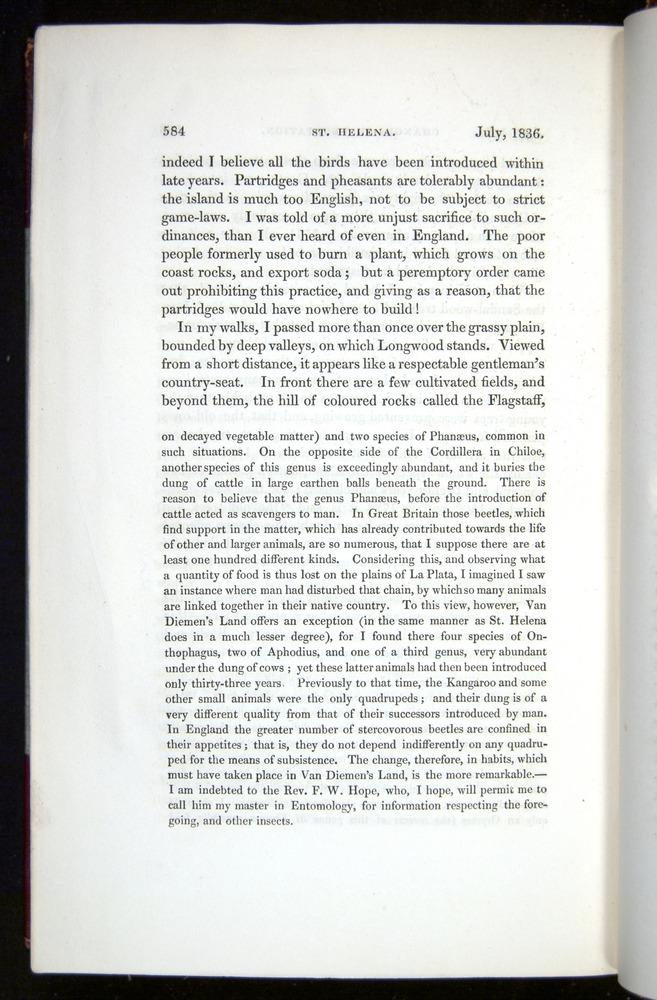 Image of Darwin-F11-1839-00584