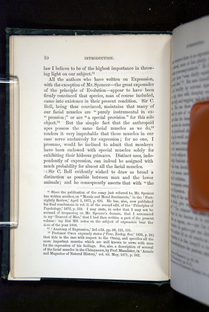 Image of Darwin-F1142-1872-010