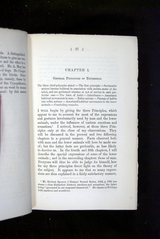 Image of Darwin-F1142-1872-027