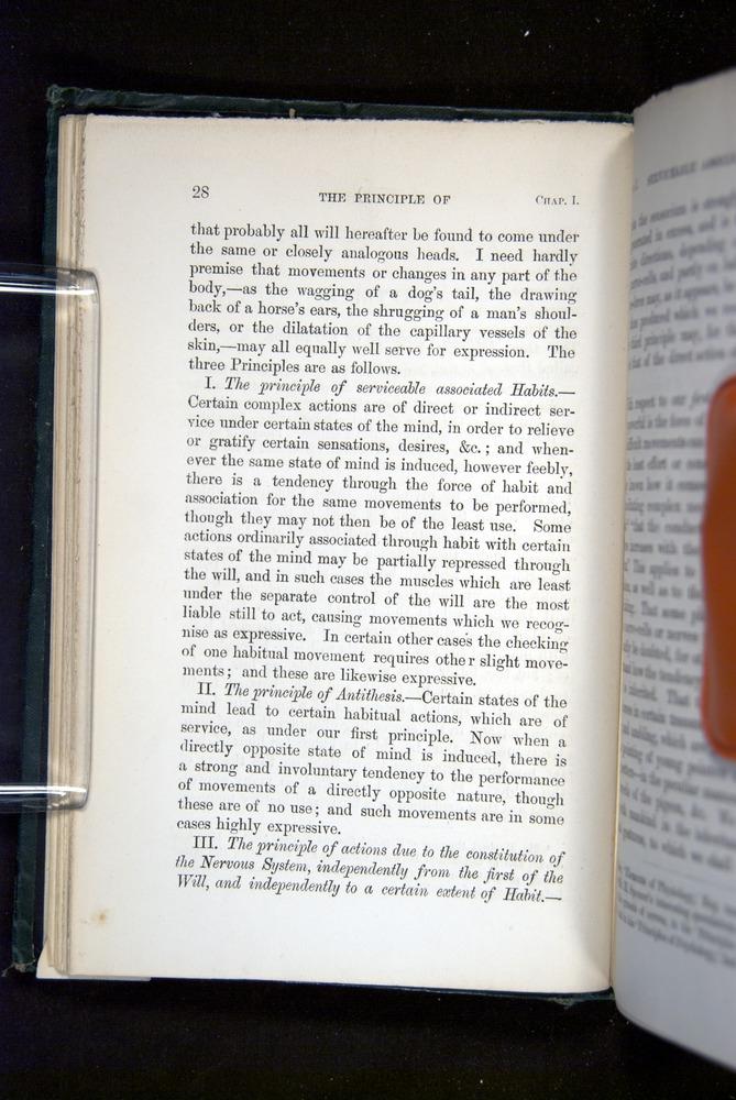 Image of Darwin-F1142-1872-028