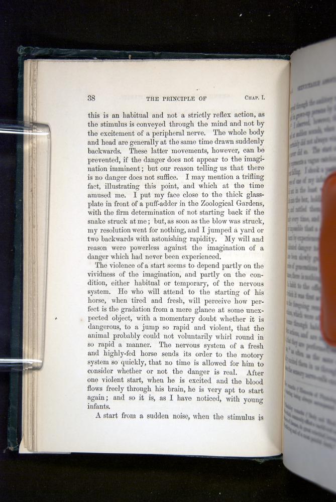 Image of Darwin-F1142-1872-038