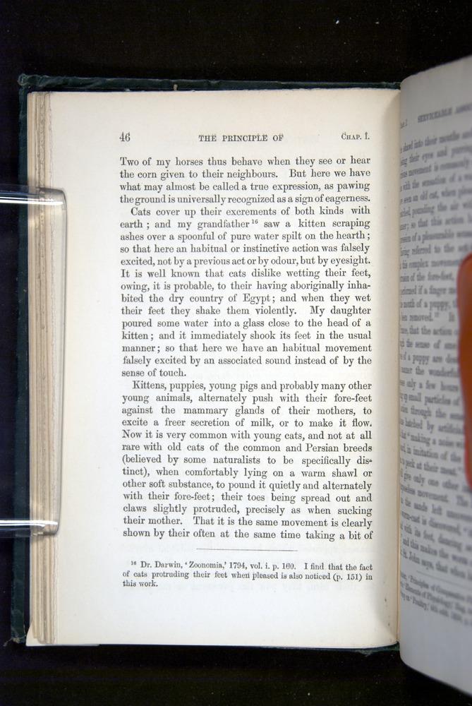 Image of Darwin-F1142-1872-046