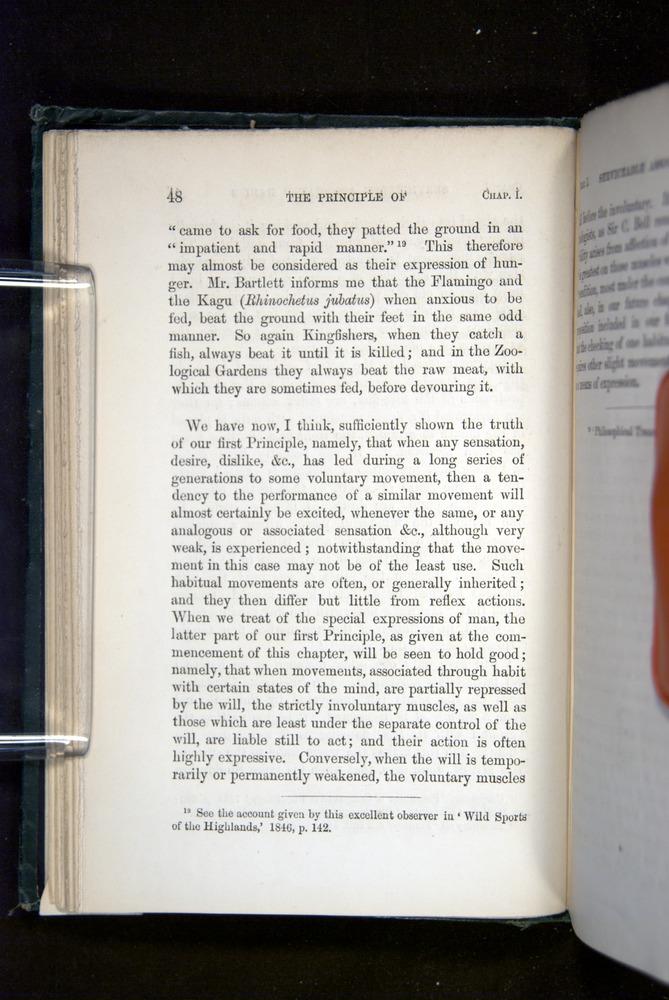 Image of Darwin-F1142-1872-048