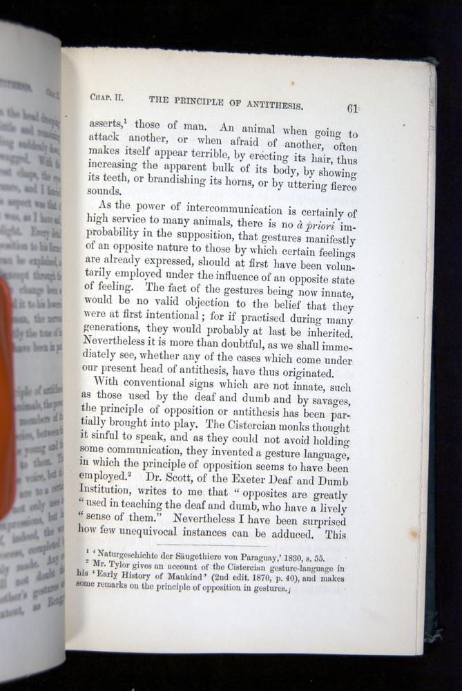 Image of Darwin-F1142-1872-061