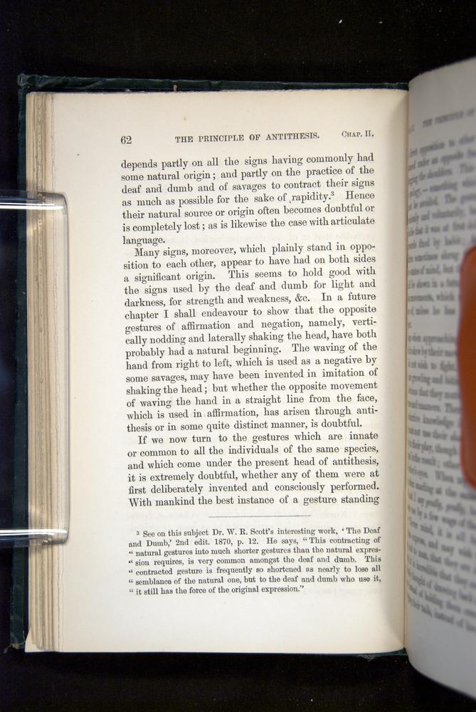 Image of Darwin-F1142-1872-062