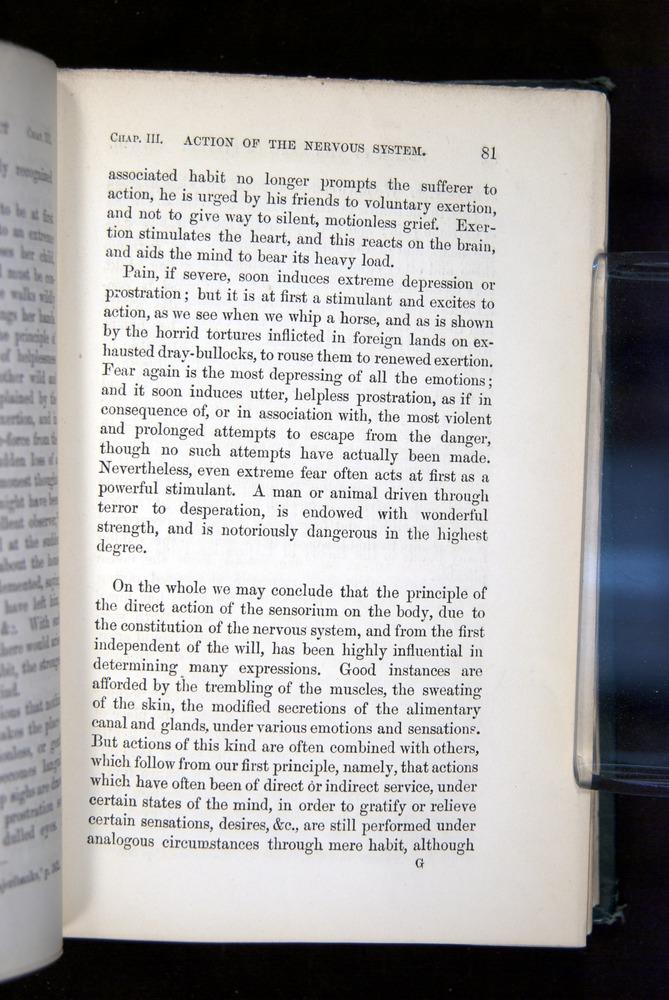 Image of Darwin-F1142-1872-081