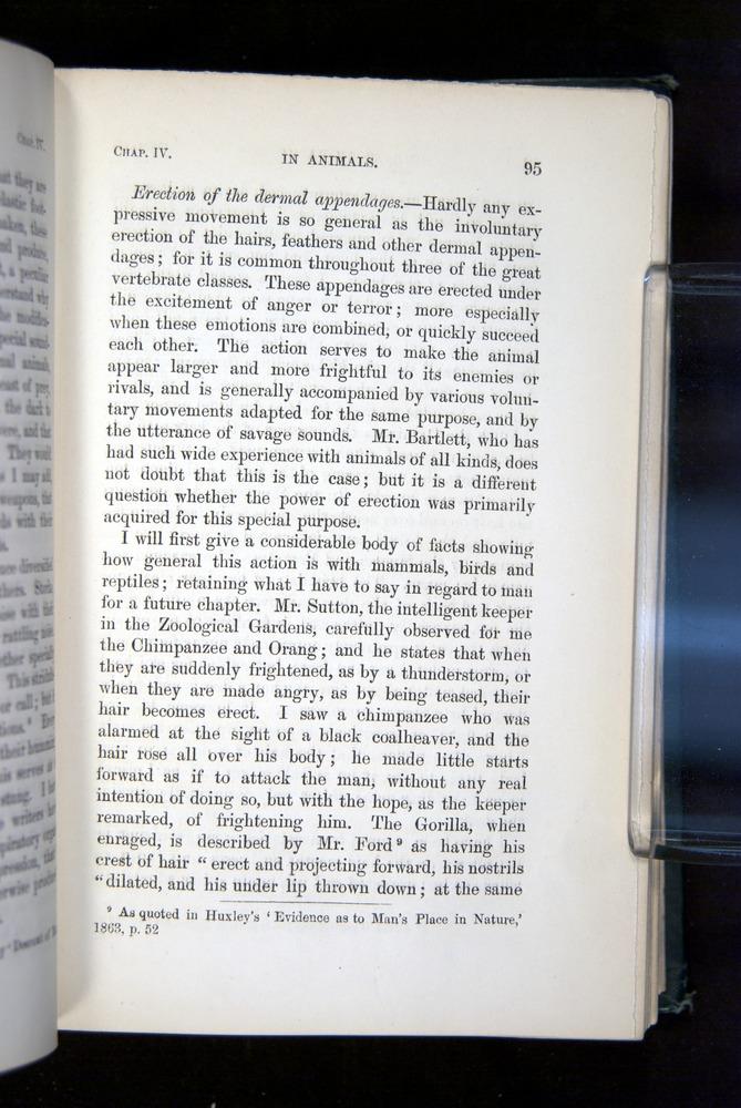 Image of Darwin-F1142-1872-095