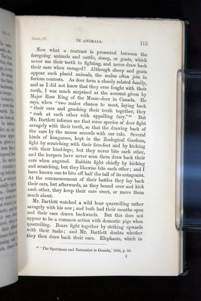 Image of Darwin-F1142-1872-113