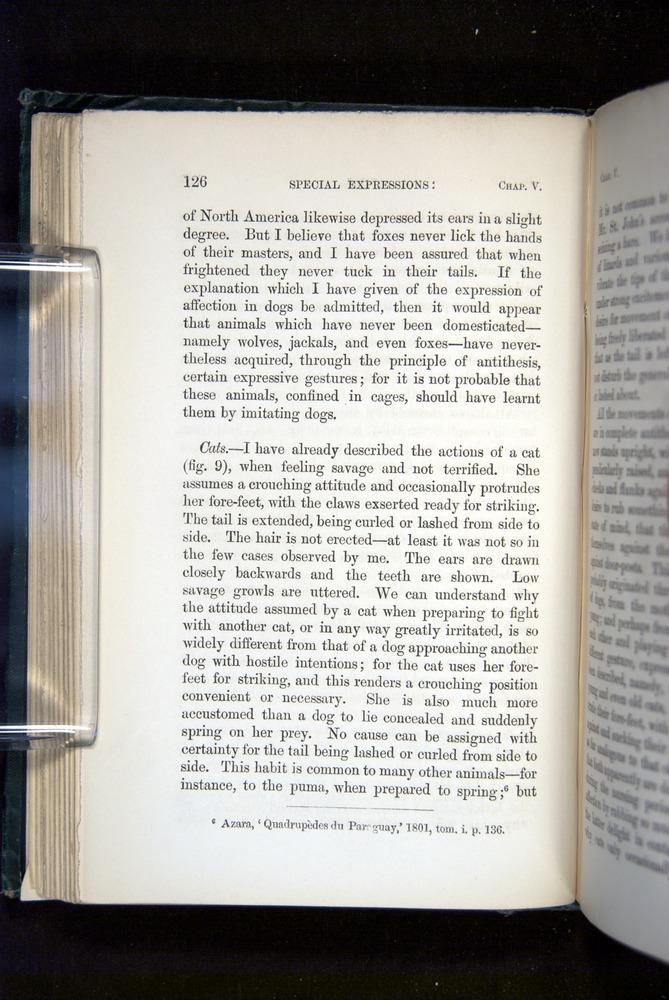 Image of Darwin-F1142-1872-126
