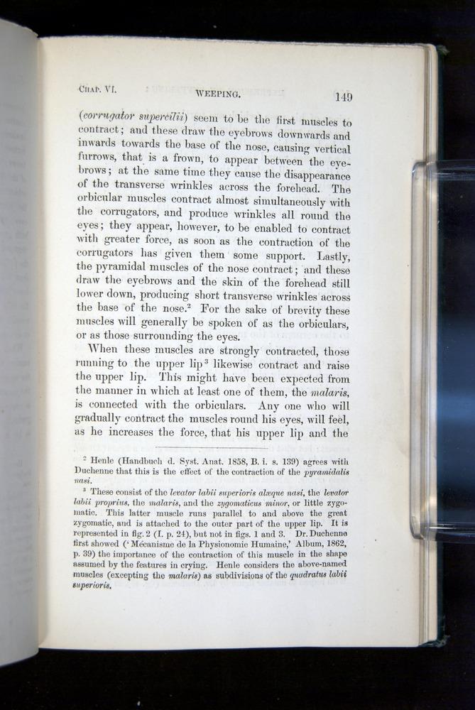 Image of Darwin-F1142-1872-149