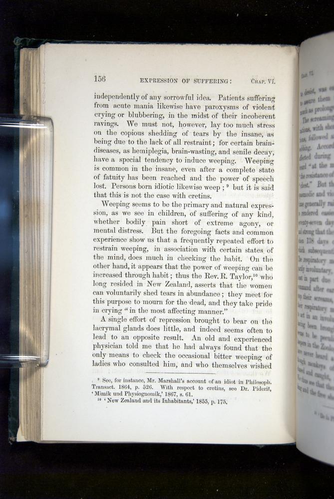 Image of Darwin-F1142-1872-156