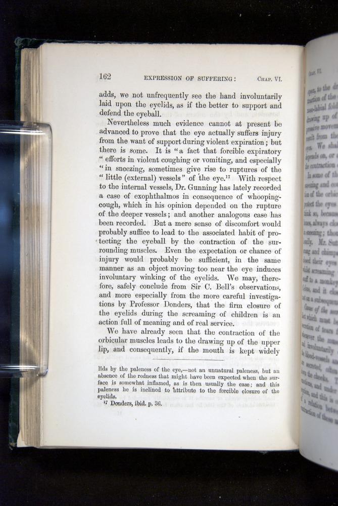 Image of Darwin-F1142-1872-162