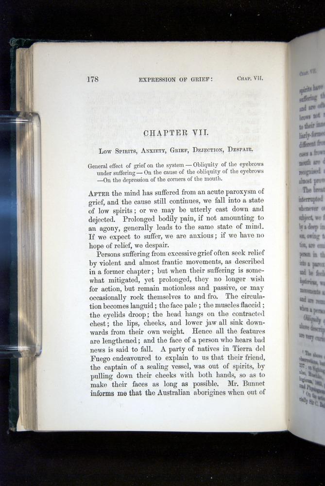 Image of Darwin-F1142-1872-178