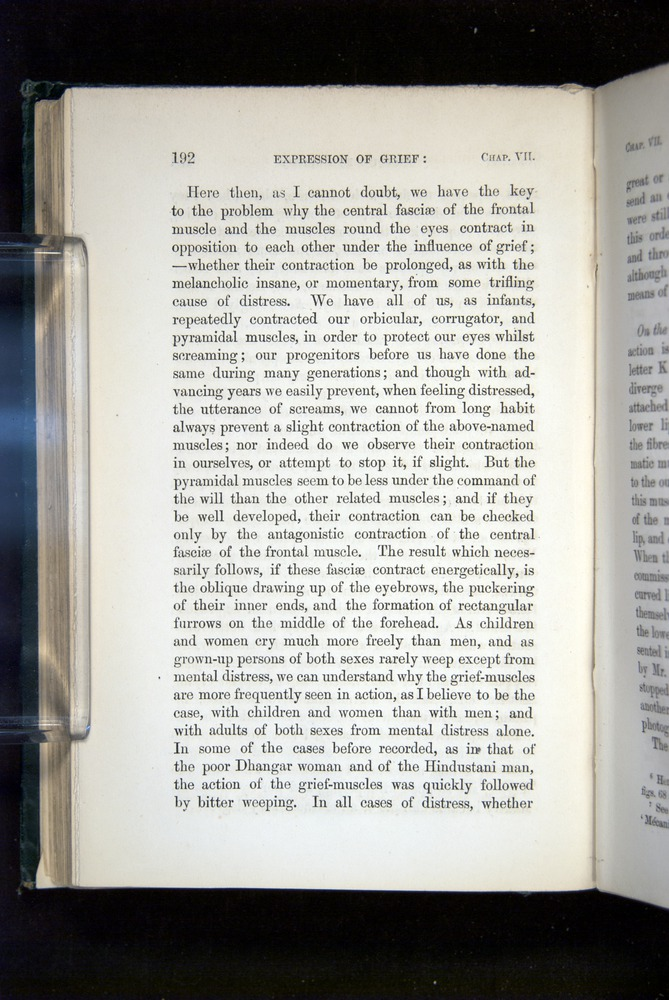 Image of Darwin-F1142-1872-192