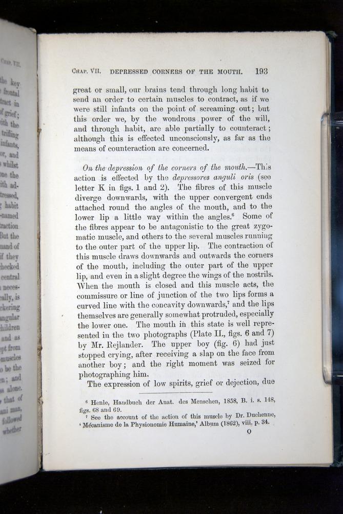 Image of Darwin-F1142-1872-193