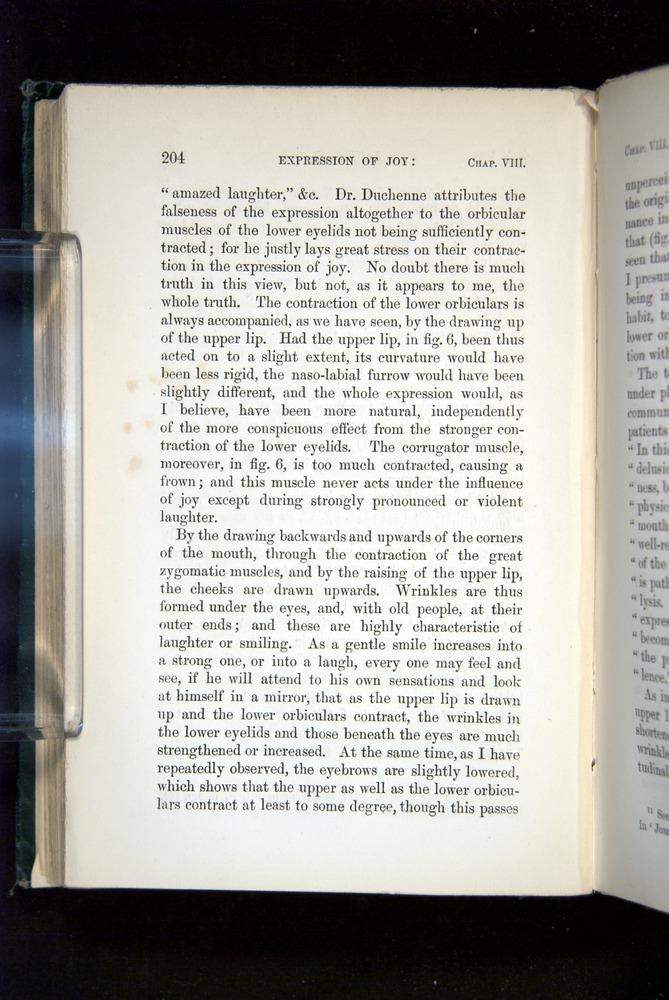 Image of Darwin-F1142-1872-204