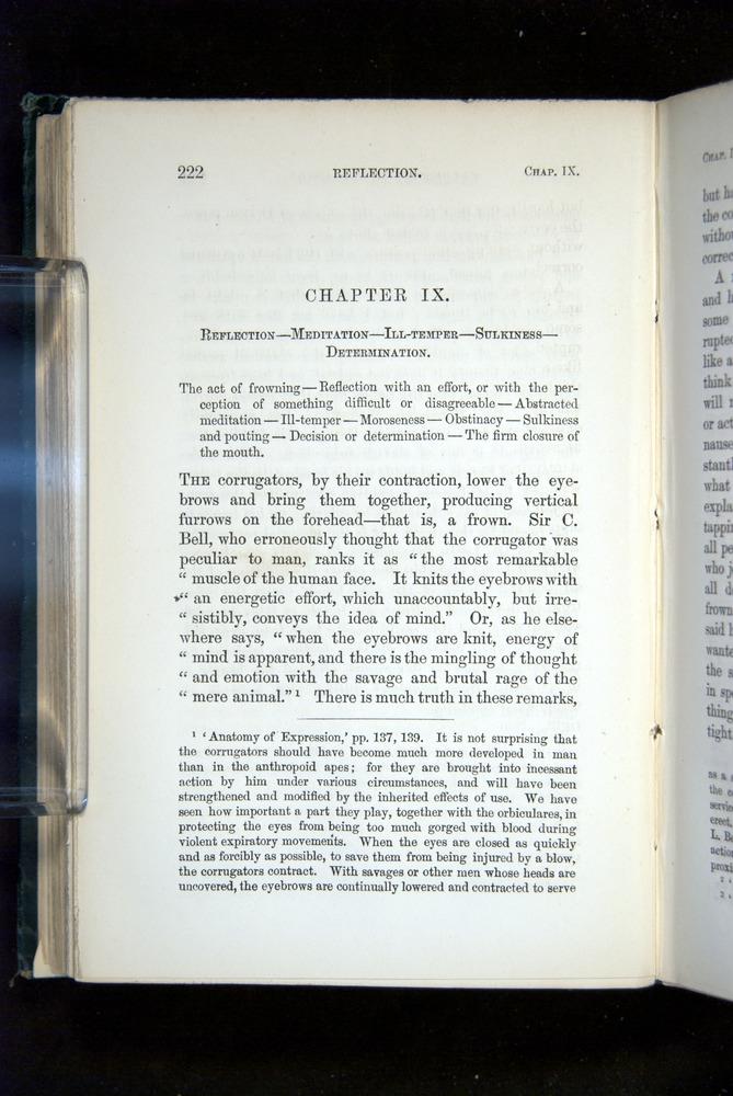 Image of Darwin-F1142-1872-222