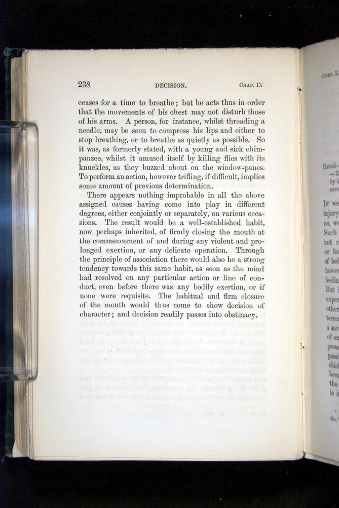 Image of Darwin-F1142-1872-238