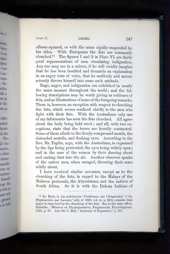 Image of Darwin-F1142-1872-247