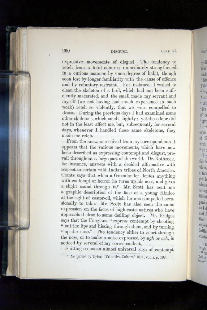 Image of Darwin-F1142-1872-260