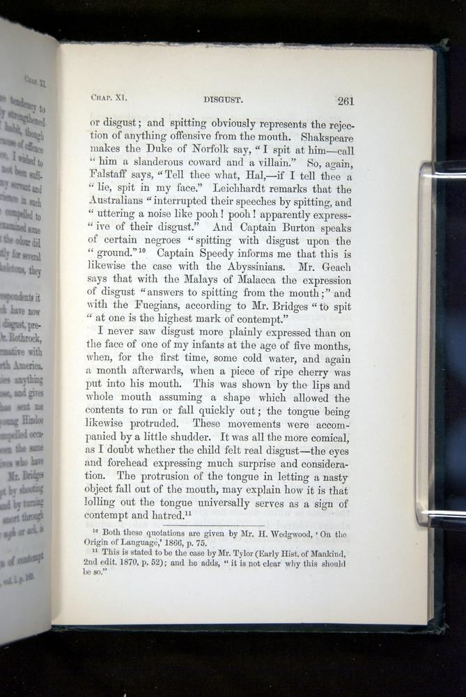 Image of Darwin-F1142-1872-261