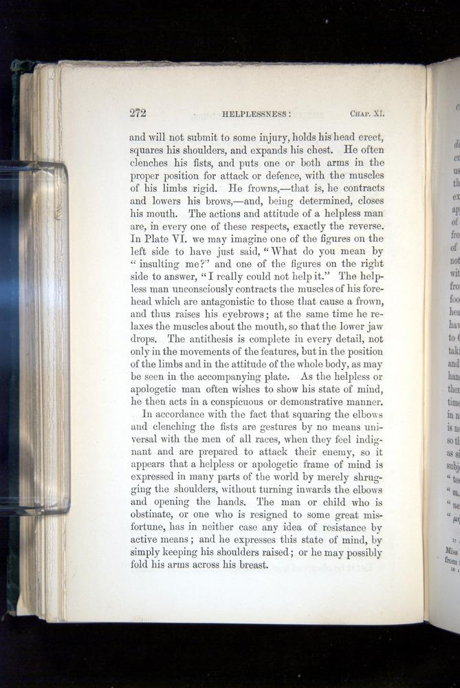 Image of Darwin-F1142-1872-272
