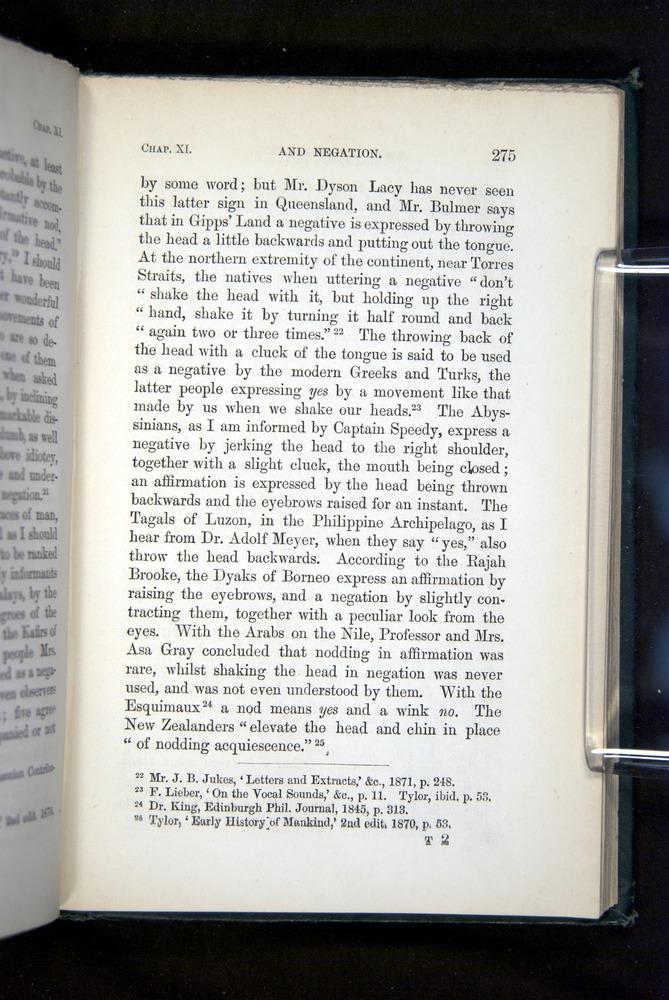 Image of Darwin-F1142-1872-275
