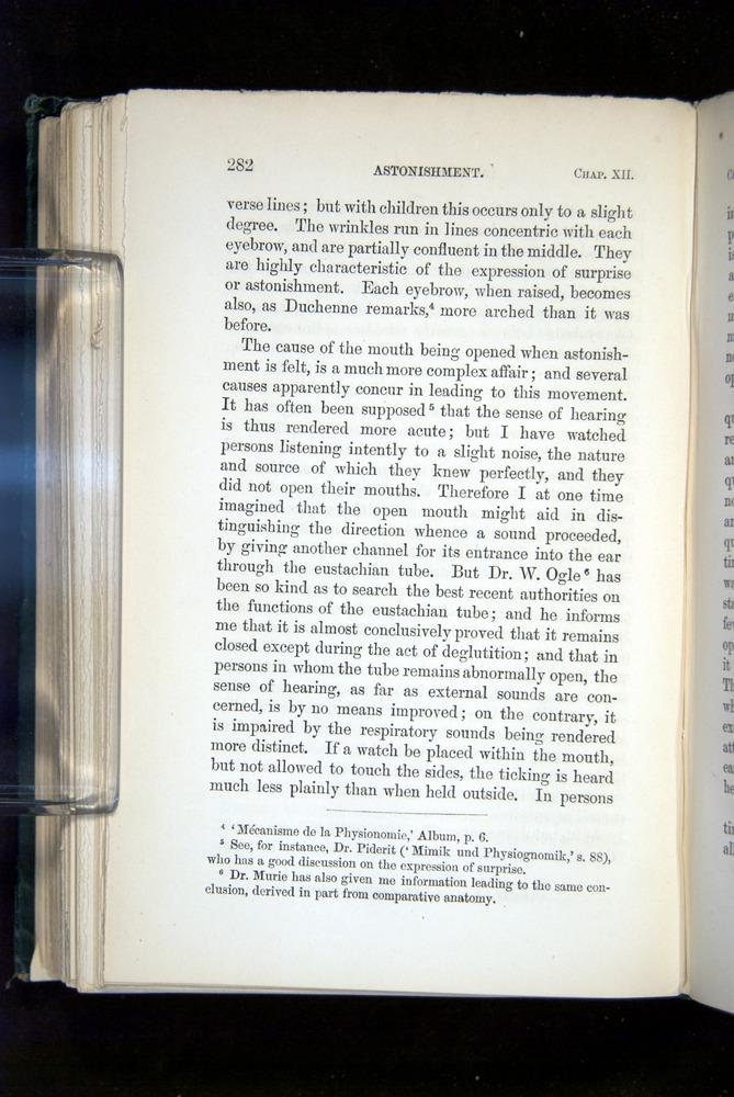 Image of Darwin-F1142-1872-282